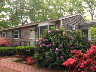 Walk to the Beach Vacation Rental - Mashpee vacation rentals