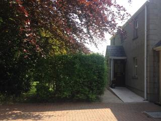 3 bedroom House with Internet Access in Ballymena - Ballymena vacation rentals