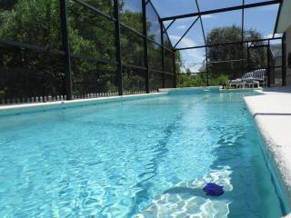3 Master Suites + Pool & Spa + No Rear Neighbours - Clermont vacation rentals