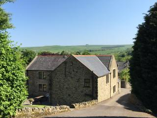 Spacious 7 bedroom Cottage in Frosterley - Frosterley vacation rentals