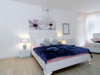 BIG LUXURY 3 ROOMS Central City Apt. MITTE - Berlin vacation rentals