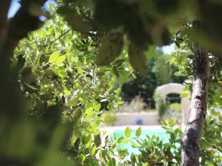 La Bohème gite de charme avec piscine George - Vinsobres vacation rentals