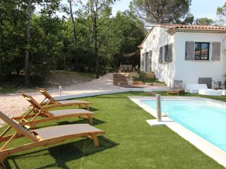 Nice Villa with Internet Access and Dishwasher - Brignoles vacation rentals