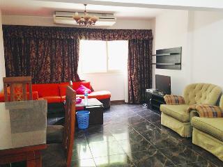 cairo maadi street 14 big flat - Cairo vacation rentals