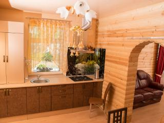 Nice House with Shared Outdoor Pool and Housekeeping Included - Pinsk vacation rentals