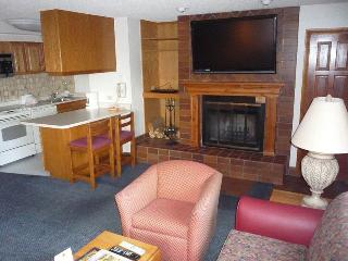 Cedar at Streamside Vail 1BR/2Bath Sleeps 6 - Vail vacation rentals