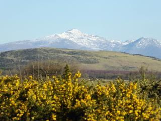 Lovely House with Internet Access and Dishwasher - Harlech vacation rentals