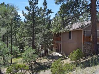 Nice 8 bedroom Cabin in Big Bear Lake with Internet Access - Big Bear Lake vacation rentals