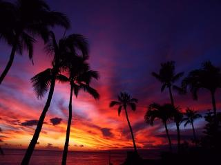 SPECIAL: $275/night to 12-13-16 Direct Oceanfront Central A/C Sleeps 6-8 - Lahaina vacation rentals