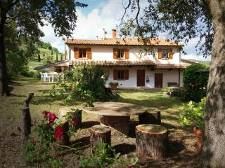 Podere Le Lame Farmhouse - Olivo - Riparbella vacation rentals