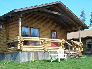 Perfect Cottage with Internet Access and A/C - Margaree Forks vacation rentals