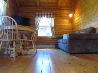Perfect Cottage with Internet Access and Television - Margaree Forks vacation rentals