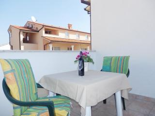Lovely Villa with Internet Access and Garden - Crikvenica vacation rentals