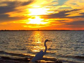 Resort life minutes from Sanibel - Fort Myers vacation rentals