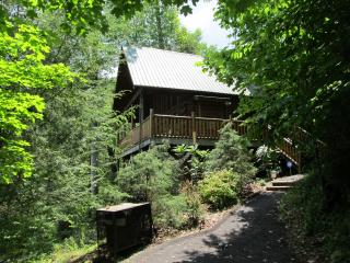 1 bedroom House with Deck in Gatlinburg - Gatlinburg vacation rentals