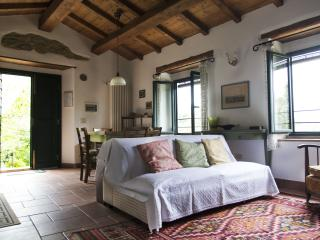 """Il coccodrillo"" relax in collina - Vicchio vacation rentals"