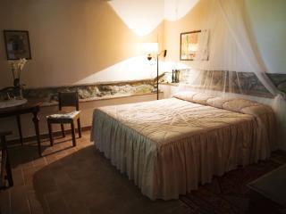 """""""Il caminetto"""" un oasi di relax - Vicchio vacation rentals"""