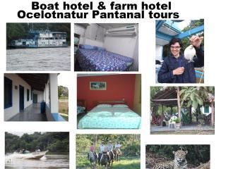 Boat hotel and farm hotel ocelotnatur Pantanal - Poconé vacation rentals