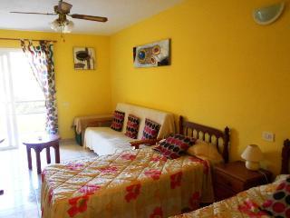 Sunny Arona Studio rental with Tennis Court - Arona vacation rentals