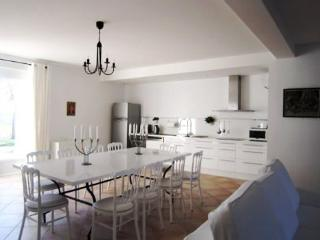 Nice House with Internet Access and A/C - Sainte-Foy-d'Aigrefeuille vacation rentals