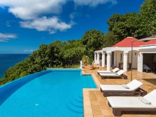 Perfect Villa with Internet Access and Television - Gustavia vacation rentals