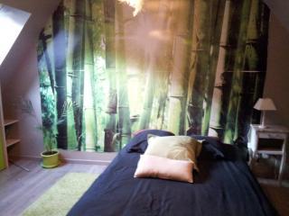 chambre  avec sa salle de bain + PDJ - Gouvieux vacation rentals