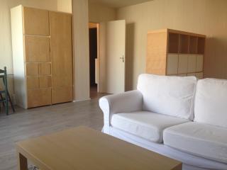 Beau Studio de 40m2 avec terrasse - Reims vacation rentals