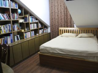 Comfortable 1 bedroom Bed and Breakfast in Xining - Xining vacation rentals