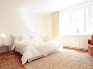 Opera at your doorstop - Luxury apartment - Vienna vacation rentals