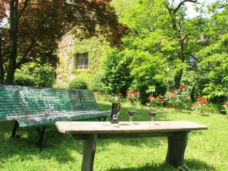 Stylish apartment, set within beautiful gardens - Rouairoux vacation rentals