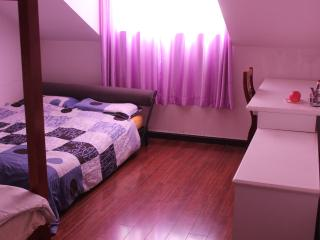 Convenient Bed and Breakfast with Internet Access and Wireless Internet - Xining vacation rentals