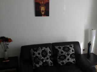 2 bed apartment heart of Limerick city - Limerick vacation rentals