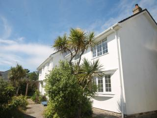Lovely 3 bed good location for town/beaches/gannel - Newquay vacation rentals