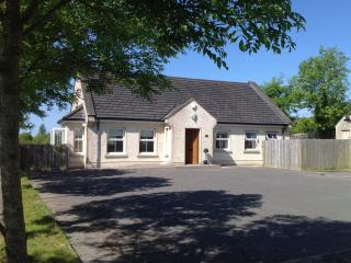 A quiet peaceful modern Cottage. - Enniskillen vacation rentals