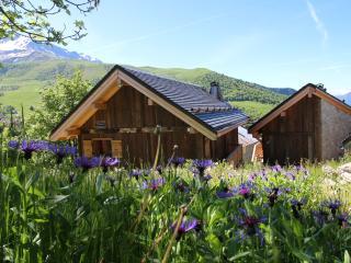 Adorable 5 bedroom Saint Francois Longchamp Ski chalet with Internet Access - Saint Francois Longchamp vacation rentals