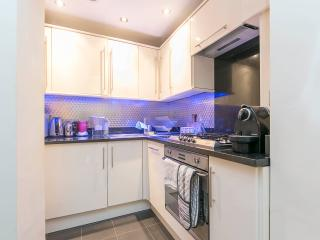 1 Bedroom apartment in West London - London vacation rentals