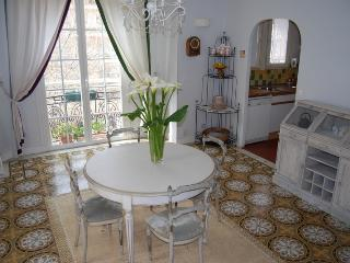 Antibes center, near beaches and shops. - Antibes vacation rentals