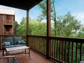 Pigeon Forge, TN - Pigeon Forge vacation rentals