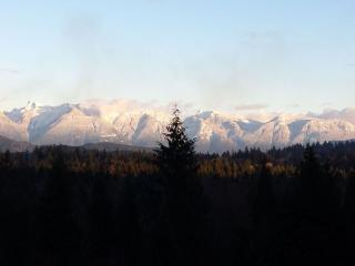 Pet Friendly And Close To The Langdale Ferry - Gibsons vacation rentals