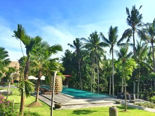 The Artini Resort - A 39 rooms hotel in Ubud - Lodtunduh vacation rentals