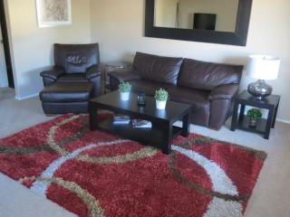 Nice lake condo!. Large living room, good decor. - Chandler vacation rentals