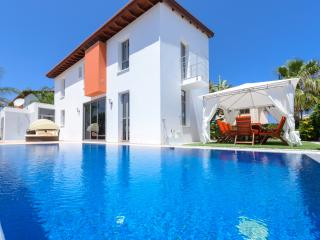 Beautiful Villa with Internet Access and A/C - Ayia Napa vacation rentals
