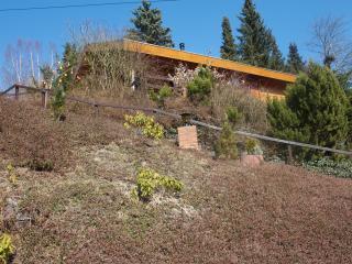 Rustiek gelegen nabij Willingen een houten chalet - Willingen vacation rentals