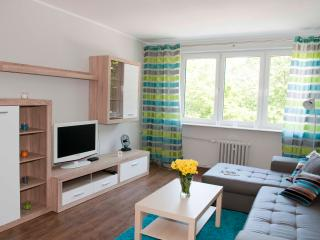 Nice 2 bedroom Gdynia Condo with Central Heating - Gdynia vacation rentals