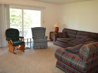 Lake Anna Townhouse - Mineral vacation rentals
