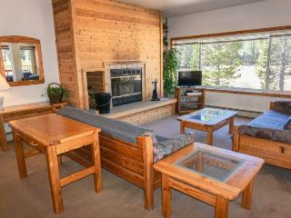 Two Bedroom Family Favorite, Sun Meadows Two #102 - Kirkwood vacation rentals