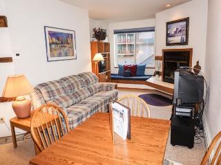 Cozy One Bedroom, Sun Meadows Three #103 - Kirkwood vacation rentals