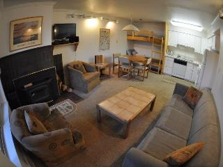 Base Camp #20 Pet-Friendly One Bedroom - Kirkwood vacation rentals