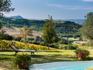 Bright Villa with Internet Access and Central Heating - Castelnuovo Dell'abate vacation rentals