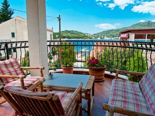 Villa Anna Apartment no. 5 - yellow - Zaton vacation rentals